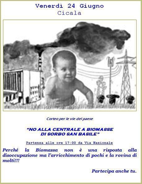 biomasse_cicala